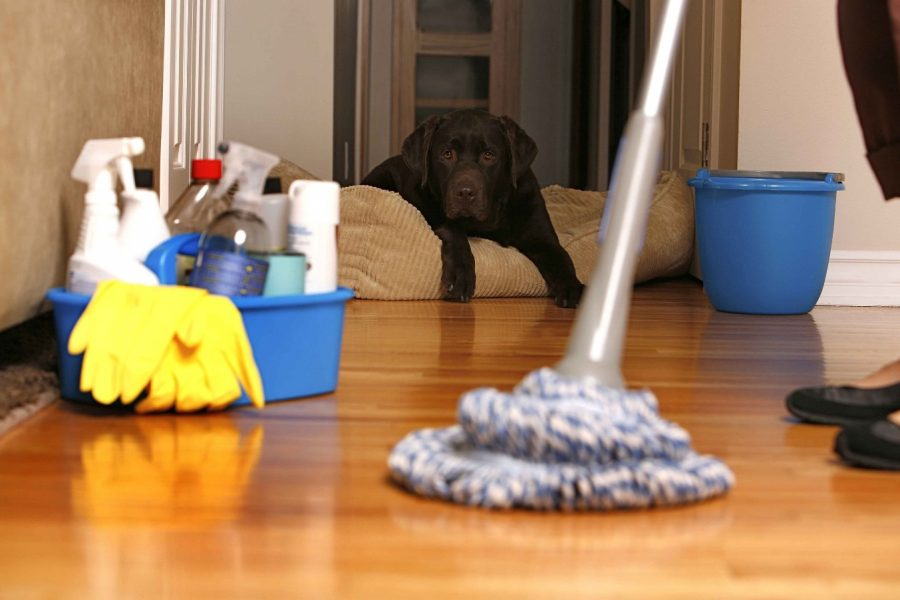 Various Types of Cleaning Services